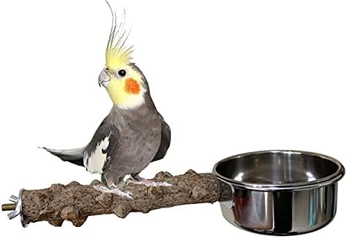 Perca de madera natural para pájaros con tazas de alimentación para pájaros de acero inoxidable para alimentos y agua, alimentador de platos para cacatiel Conure Budgies, periquito, loro