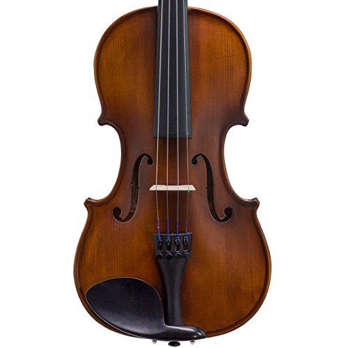 Bunnel Premier Violin Clearance Outfit 4/4 Full Size - Carrying Case...