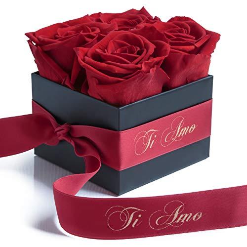 ROSEMARIE SCHULZ Heidelberg Ti Amo - Rosenbox mit konservierten Rosen haltbar 3 Jahre Geschenke für Freundin/Valentinstag / 8,5 x 8,5 cm (Ti Amo, Rot)
