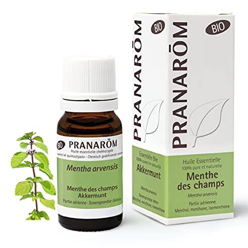 Pranarom Menta de Campo BIO, Aceite Esencial Natural, 10 ml