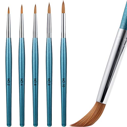 5 Pieces Acrylic Nail Brush with Round Wood Handle 3D Painting Drawing Brush UV Gel Carving Pen Brush for Acrylic Liquid Styling Nail Art Decoration (2-10, Blue)