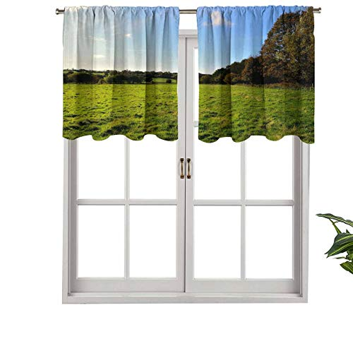 CRICKOOM Fashion Design Valance Thermal Insulated Window Panels Brilliant Morning on a Pasture in Standish England for Kids Room, W42 x L18