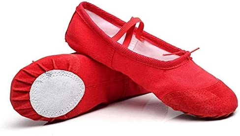 Mail order Sports Accessories 2 Pairs Popular brand Flats Soft Yoga Ballet Latin Shoes Da