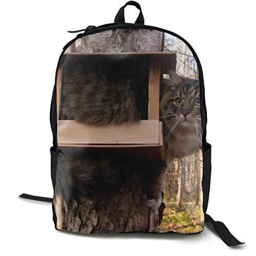 Katzen-Vogelhaus sitzen lustiger Baum Wald Fell Schulrucksack Schulrucksack Büchertasche Reise Laptop Rucksack Casual Daypack für Kinder Studenten Erwachsene