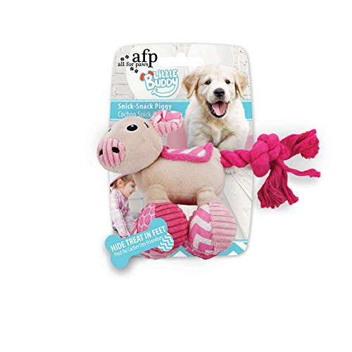 ALL FOR PAWS AFP4213 Jouet pour Chiots Little Buddy Snick Cochon