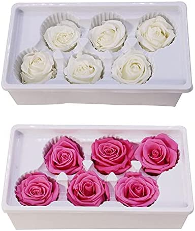 Artificial and Dried Los Angeles Mall Albuquerque Mall Flower 2 Set Heads Roses Natur Real Eternal