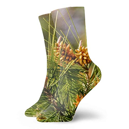 Männer/Frauen Fun Dress Socks -Many Trunks Bunte lustige Neuheit Crazy Socks