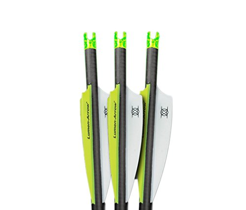 Lumenok Lumen-Arrow 20-Inch Carbon Bolts with Capture Nock (3-Pack), Green