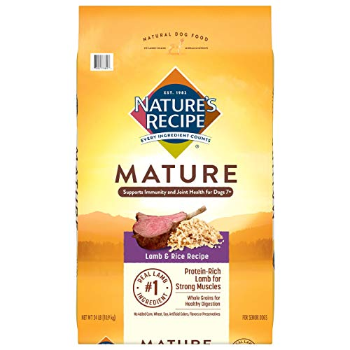 Nature's Recipe Mature Dry Dog Food, Lamb & Rice Recipe, 24 Pounds