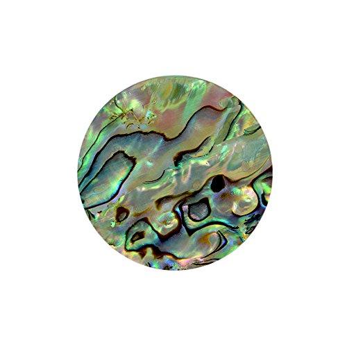 Quiges Verwisselbare 25mm Coin van Natuurlijke Schelp in verschillende mix Kleuren voor Munthangers