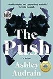 The Push: A Novel (Random House Large Print)