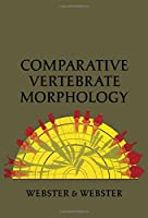Comparative Vertebrate Morphology