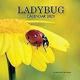 Lady Bug Calendar 2021: 16 Month Calendar