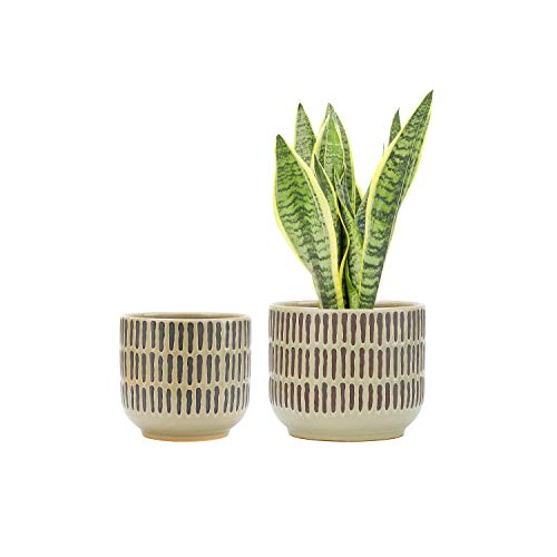 UooMay Ceramic Plant Pot Flower Planters - 6.5' and 5.3' with Drainage Hole Pots, Garden Flower Plant Container for Indoor Outdoor, Set of 2