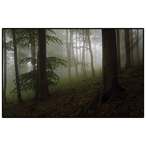 Forest Outdoor Patio Rug Laundry Room Rug Mysterious Woods with Fog Wilderness Rural Untouched Vegetation Transylvania Rugs for Christmas and Thanksgiving White Green Brown 3 x 5 Ft