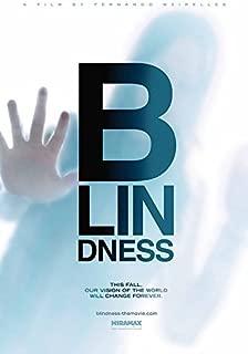 BLINDNESS Original Movie Poster 27x40 - DS - Mark Ruffalo - Julianne Moore - Gael Garcia Bernal - Danny Glover