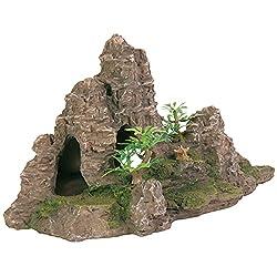 Rocher escalier avec plante, pour aquarium, 22 cm