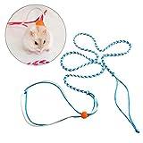 ueetek 1.4M hámster Laisse de plomo flexible Corbata Laisse collar collar arnés para ratón ardilla hámster de mascotas (color aleatorio)
