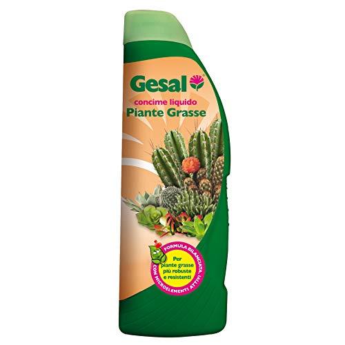 GESAL Concime Liquido per Piante Grasse, Per Piante più robuste e resistenti, 500 ml