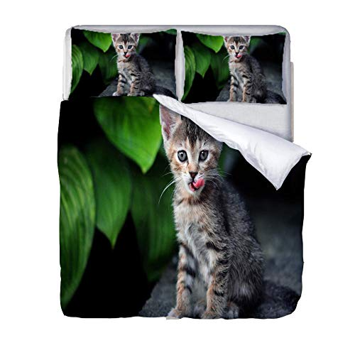 JKZHILOVE Duvet cover 91x87 inch Grey animal cat 3D printing Ultra Soft Hypoallergenic 100% Microfiber Easy Care All season Bedding with 2 Pillowcases (20x30 inch)