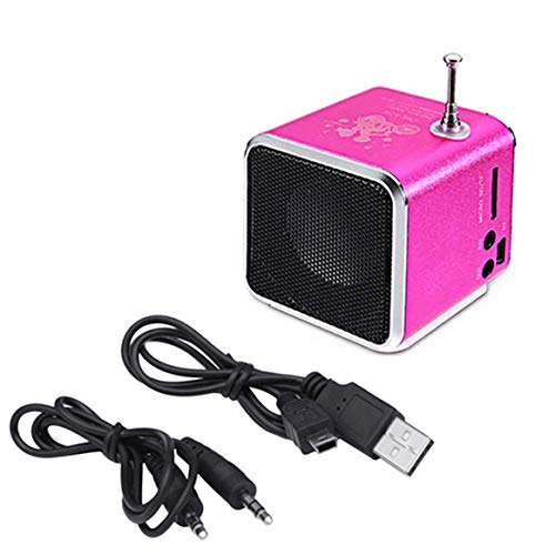 Kongqiabona-UK Nuevo Portátil Td-V26 Digital FM Radio Speaker Mini FM Radio Receiver con LCD Stereo Speaker Soporte Micro TF Card