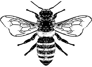 2 inch Honey Bee rubber stamp - 8062
