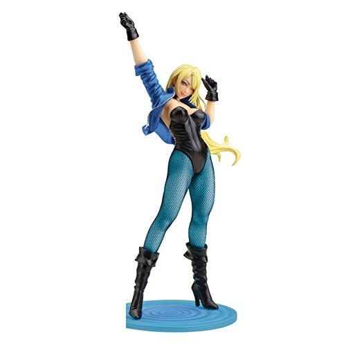 Black Canary Classic Costume Bishoujo Exclusive DC...