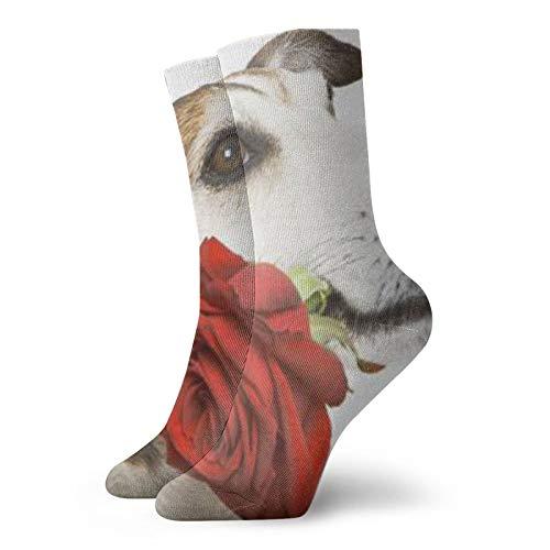 Perro (26)Calcetines unisex de moda, novela, individuales, suaves, deportivos y de ocio