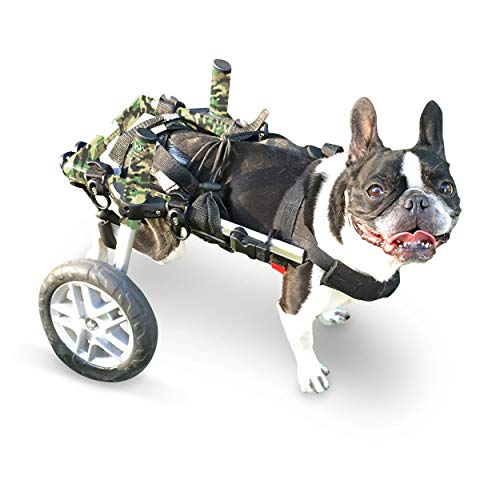 Walkin' Wheels Dog Wheelchair - for Small Dogs 11-25 Pounds -...