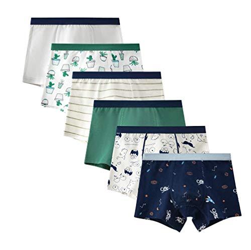 Oliked Jungen Boxershort Kids Serie Für Kinder Weiche Baumwollene Unterwäsche(Packung mit 6 Stücken) (6 PackB, 11-12 Jahre 170)
