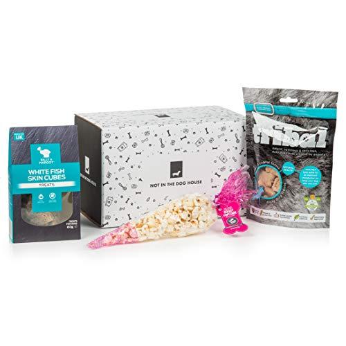 Healthy Dog Treat Box  - Fish Skin Cubes, Doggy Popcorn, Tribal Treats