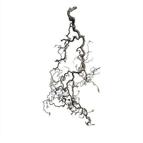 Dekoast mit Sisalseil: Korkenzieher-AST als Deko   Korkenzieherhasel-Deko   hängende Deko   Landhaus-Deko   Vogel-AST, Size_Name:60 cm