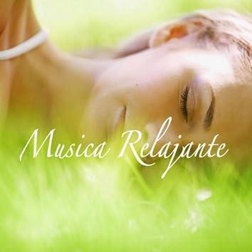 Musica Relajante