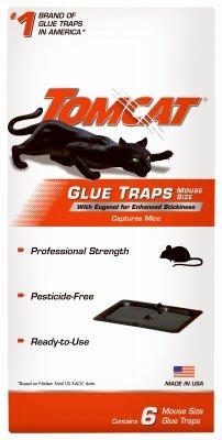 مصيدة الفئران حجم القطة