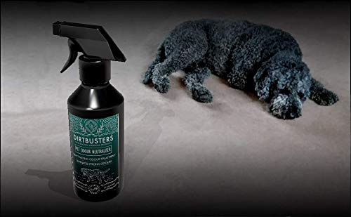 Dirtbusters pet Carpet and Upholstery Odour and Urine Eliminator deodoriser neutraliser Wild fig and Cassis Fragrance 500ml 2