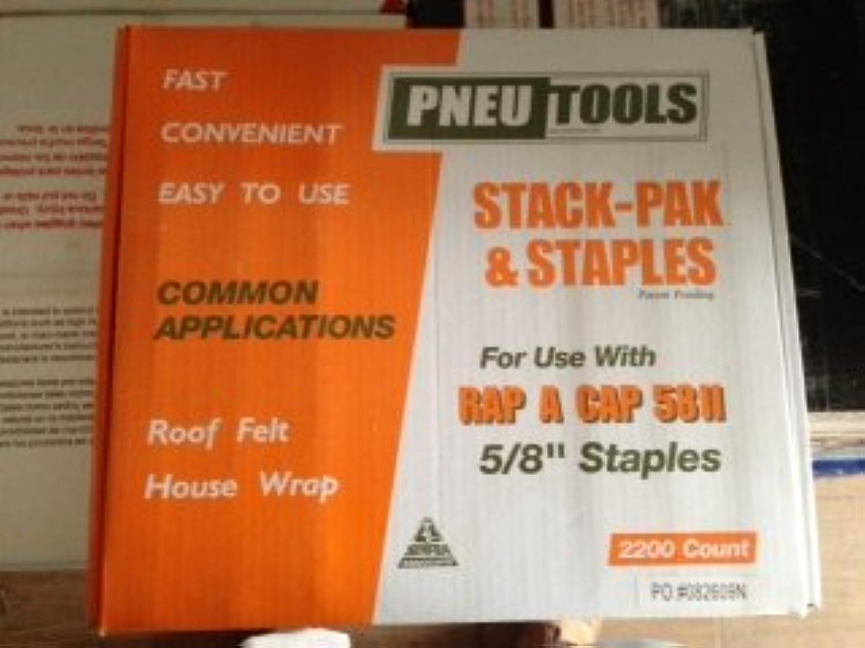 (2.200 Zählen) Zählen) Zählen) pneu-tools 922150–5 20,3 cm Stack Pak 80 Serie flach Klammern mit Kappen B00BA30CVI | Bestellungen Sind Willkommen  8fc663