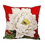 whooplaArt Square Velvet Fabric Throw Pillow Cushion Cover Peony Double Sides Home Decorative Flower Pillowcases Various Size (LC-1127, 24x24)
