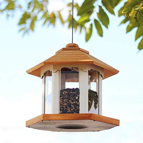 RAPLANC Comederos de Aves para la Prueba Fuera de Ardilla, comederos para pájaros Fuera Colgando Laboratorio de Aves Patio del alimentador del pájaro Ornitología