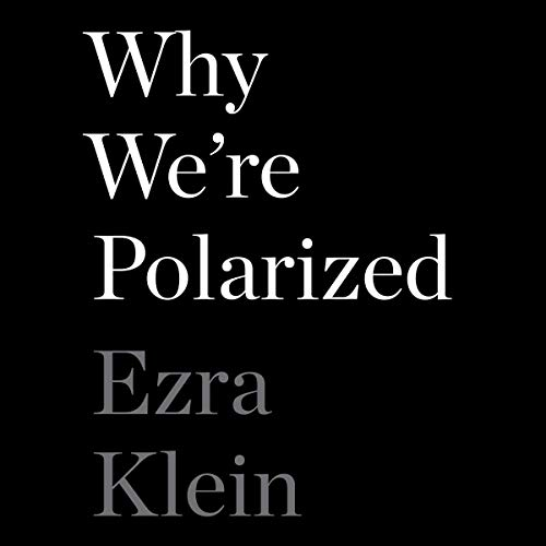 Why We're Polarized audiobook cover art