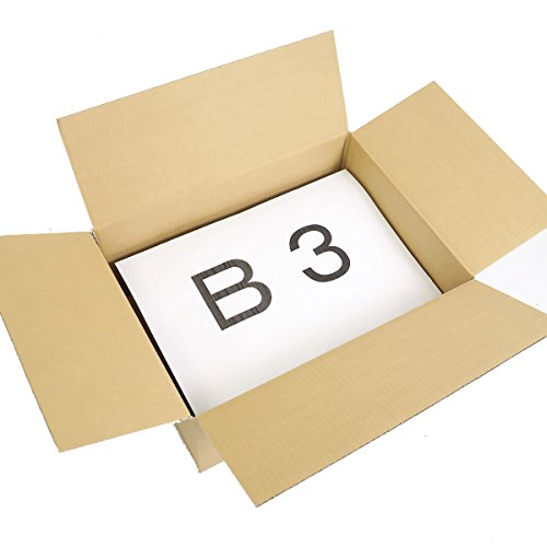 アースダンボール ダンボール 段ボール B3 120サイズ 引越 宅配 発送 40枚 【535×385×240mm】【5357】