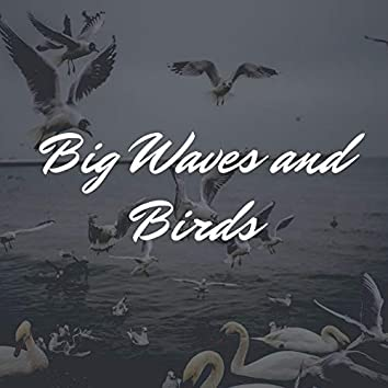 Big Waves and Birds