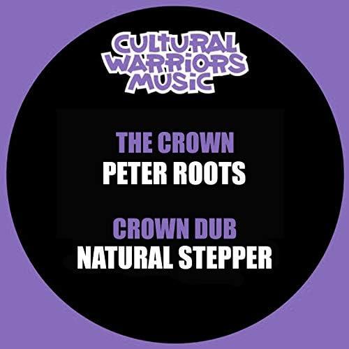 Cultural Warriors, Peter Roots, Natural Stepper
