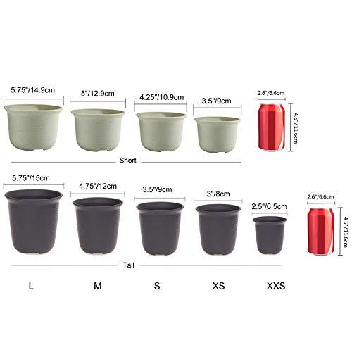T4U 11CM プラスチック植木鉢 ラウンド 多肉植物 サボテン鉢 フラワーポット プランター容器 黄褐色 10個