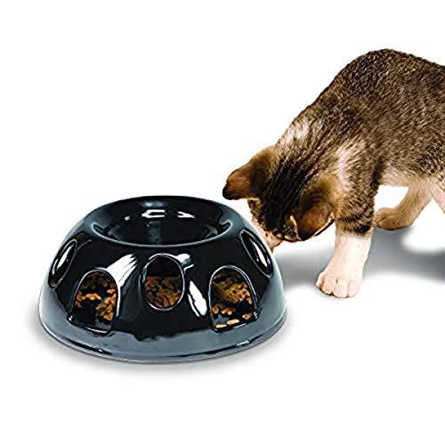 Smart Cat Pioneer Pet Tigre Diner en céramique Plat à Nourriture/Bol, Noir
