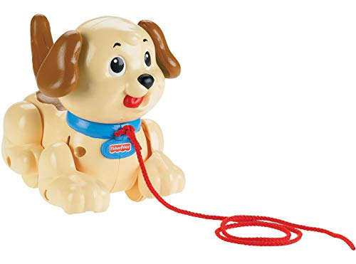 Product Image of the Fisher-Price Brilliant Basics Lil Snoopy