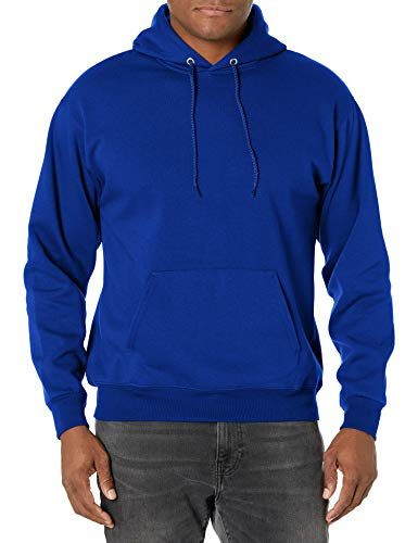 Hanes mens Pullover Ecosmart Fleece Hooded Sweatshirt,Deep Royal,Large