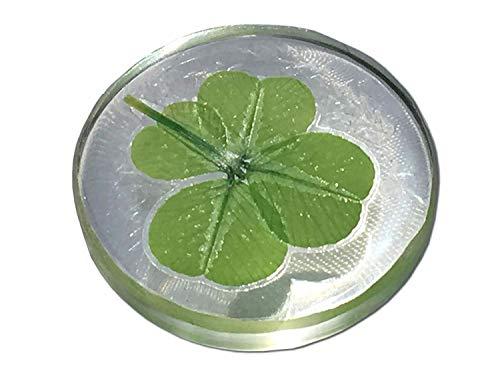"""KIN-HEBI Real Four Leaf Clover Good Luck Pocket Token, Preserved, 1.25"""" (Including Crystal Quartz)"""