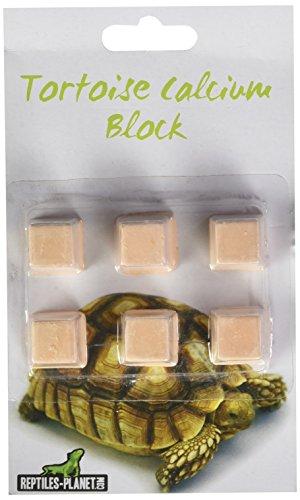 REPTILES PLANET Bloc de Calcium Nourriture pour Tortue