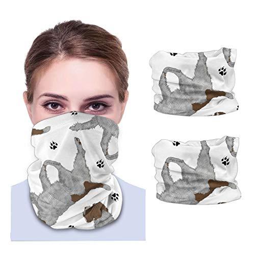 GSNWFG Trotting Wirehaired señalando Grifón y huellas huellas – Calentador facial blanco resistente al viento, diadema, multiusos 12 en 1 diademas para correr deportivas, 25 x 50 cm
