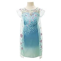Disney Frozen Fever Elsa Dress
